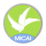 MICAI